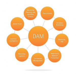 DAM-vs-CMS